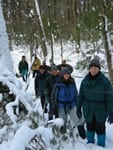 photo of walkers in winter