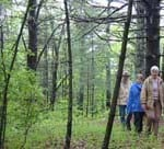 photo of a guided walk