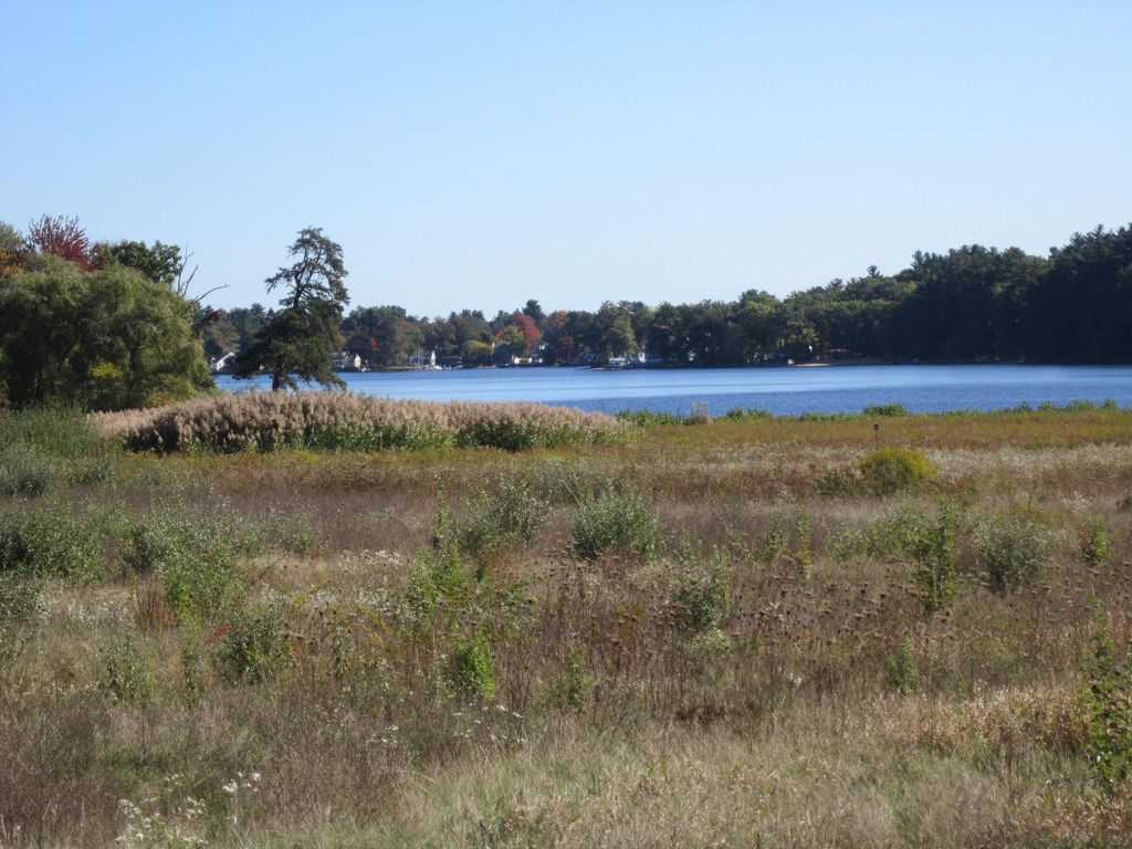 174_Shipley-Swamp-and-Lake-Nabnasset_Chris-Daley